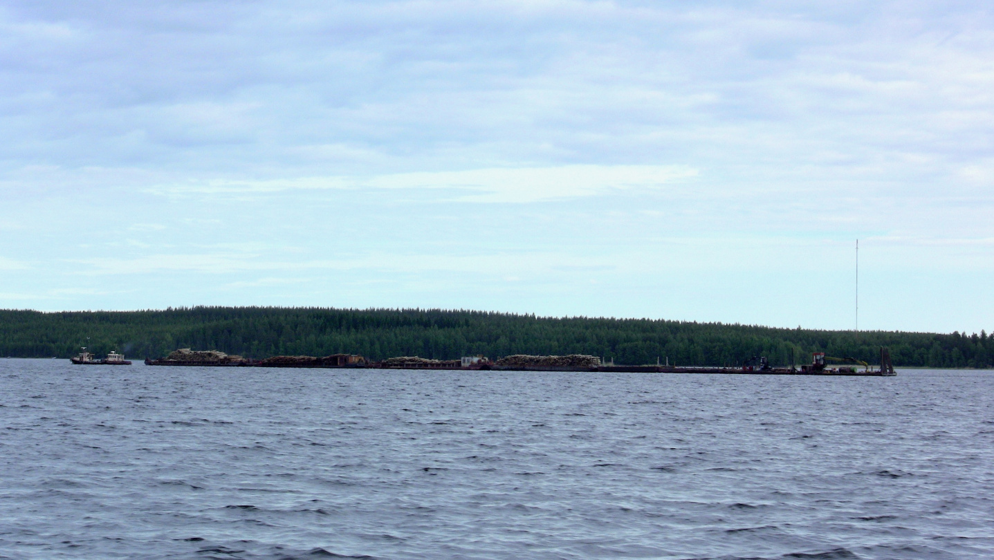 Barges of logs in Saimaa