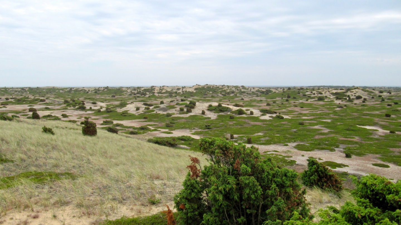 Ørkenen desert of Anholt island