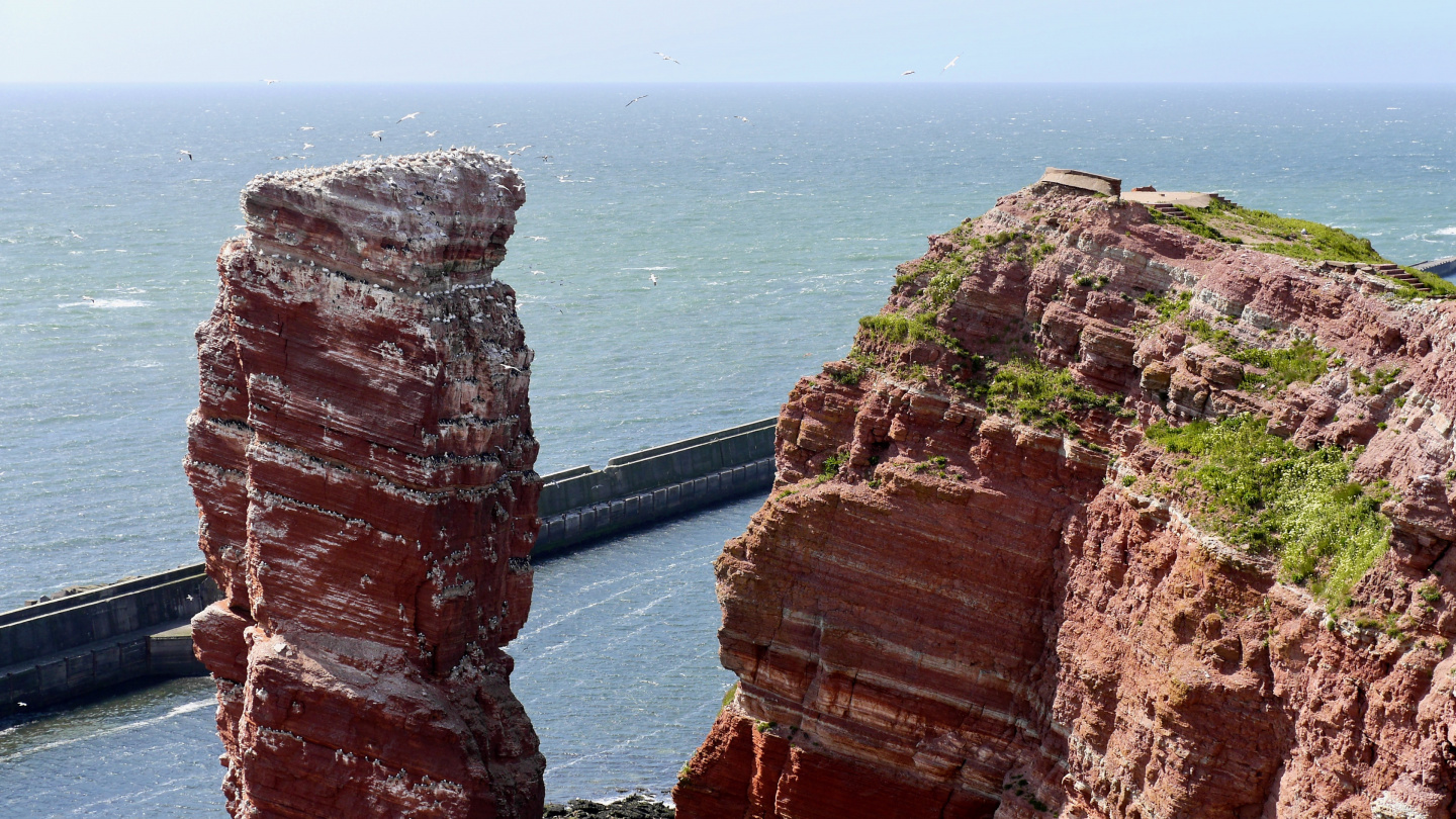 Lange Anna bird stack in Helgoland