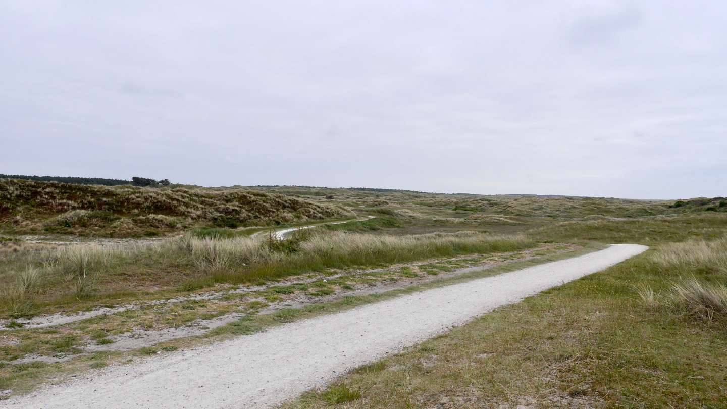 Bicycling route on the dunes of Vlieland