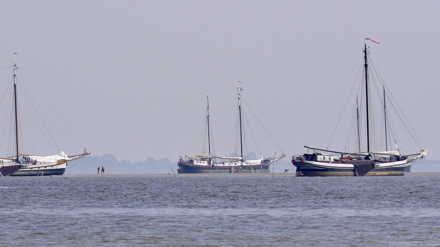 Sailing ships on Waddenzee at the low tide