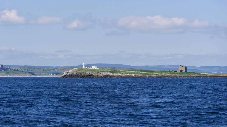 Farne saari Englannin koilliskulmassa