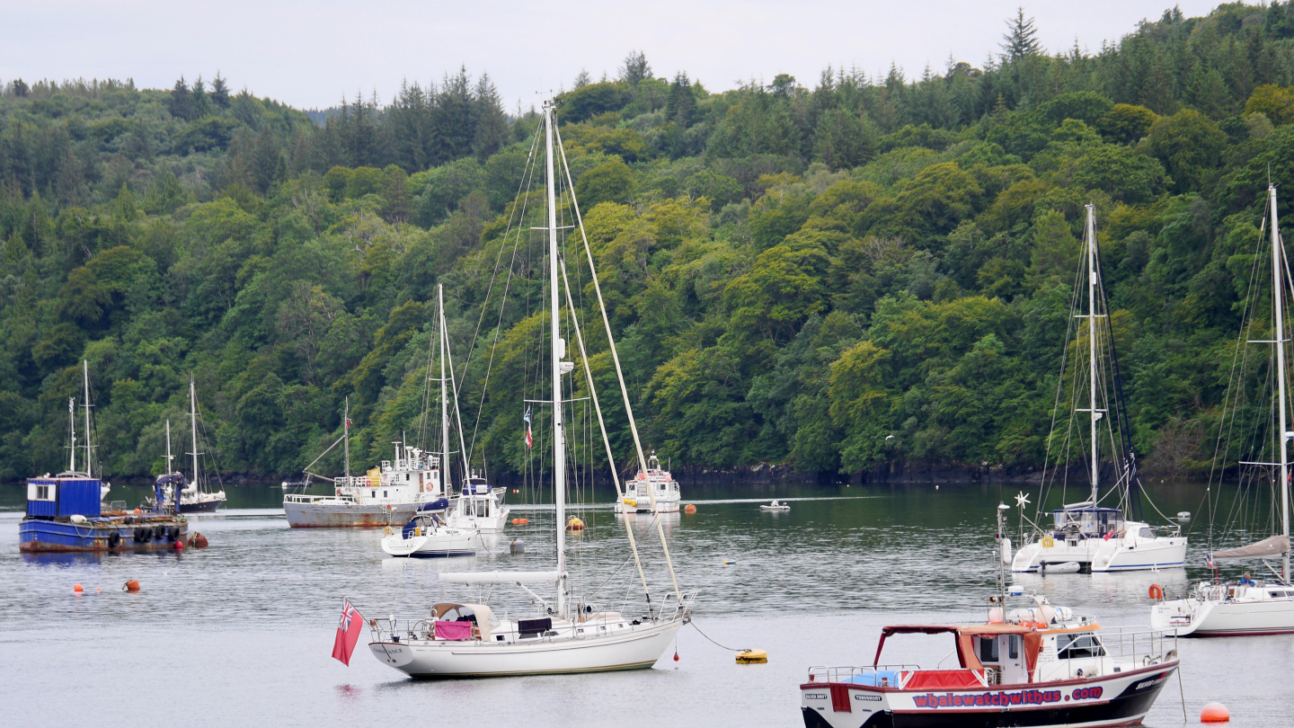 Yacht Constance of Tom Cunliffe in the anchorage of Tobermory