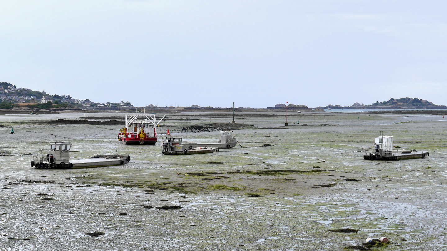 The entrance of Paimpol dries completely at low water