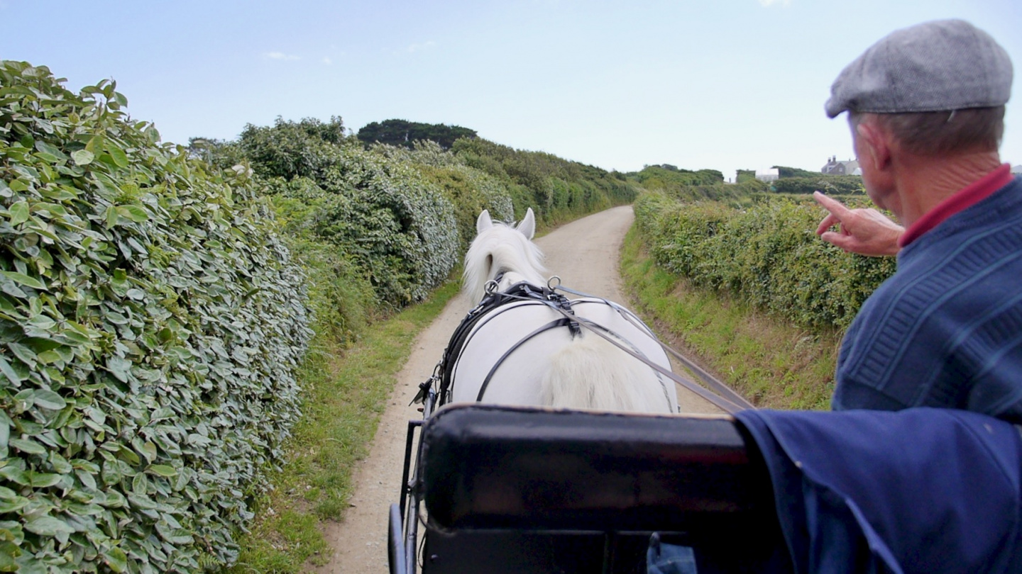 Touring with horse and carriage on the island of Sark