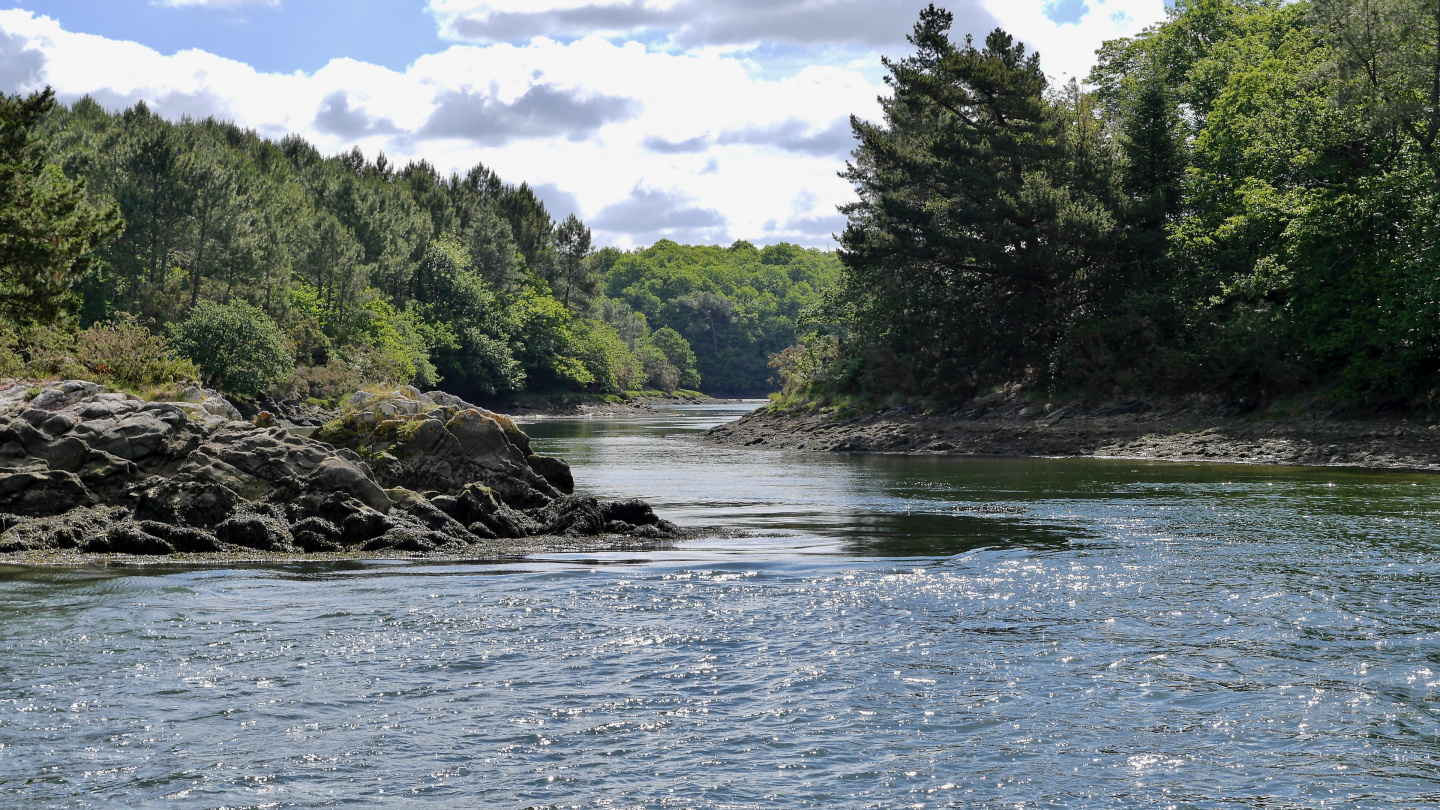 The branch of the river Odet in Brittany