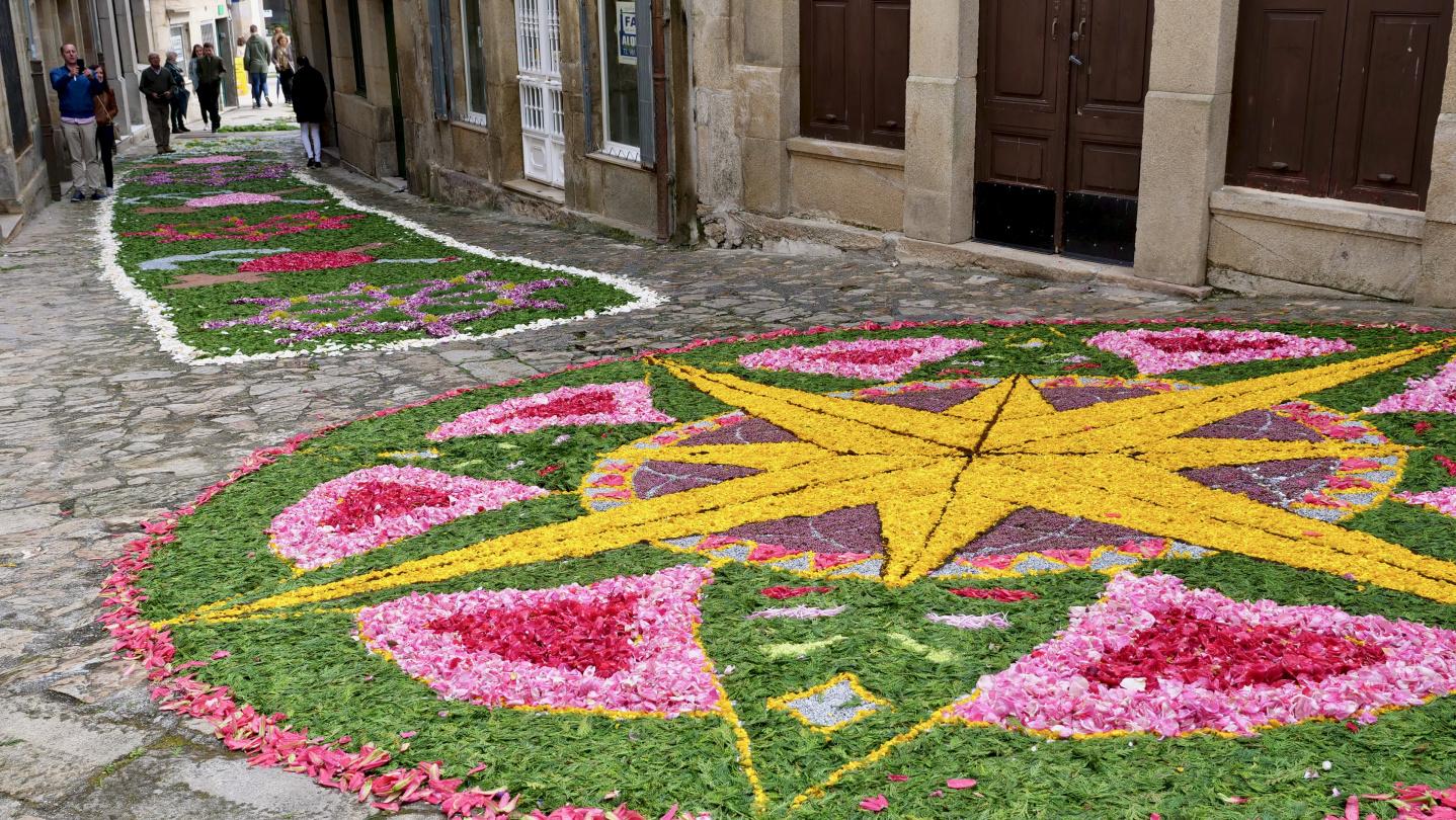 Flower carpets of Corpus Christi in Muros of Galicia