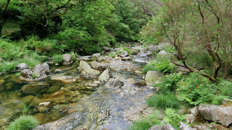 The river of río Pedras in Galicia