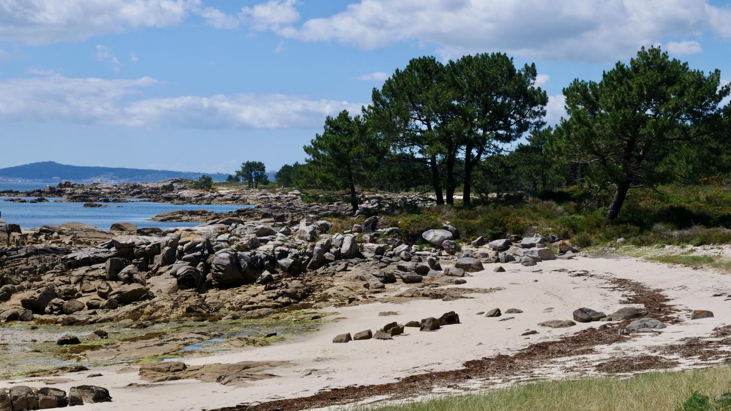 Illa de Arousa saaren ranta, Galicia